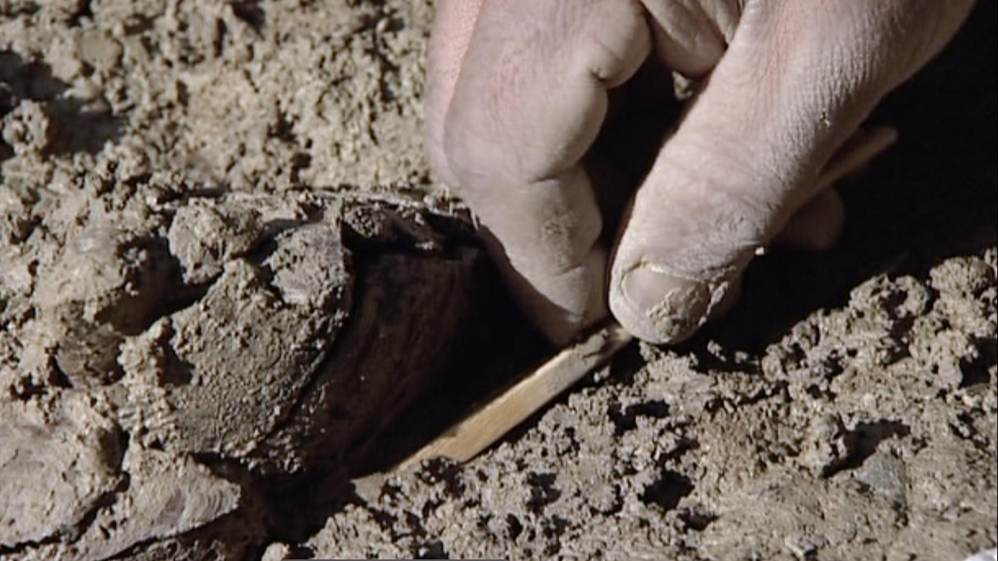 Archaeological excavation at Le Mormont, Video Still: Le crépuscule des Celtes by Stéphane Goël, Climage, 2007